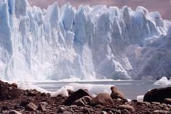 Ventisquero Perito Moreno